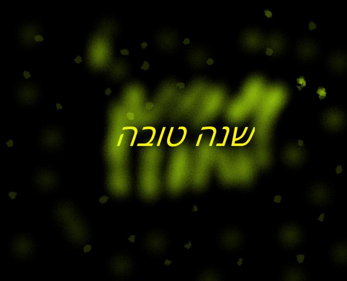 Yomim Nora'im Follow Up